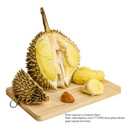 Durian. Giant Tropical Fruit.