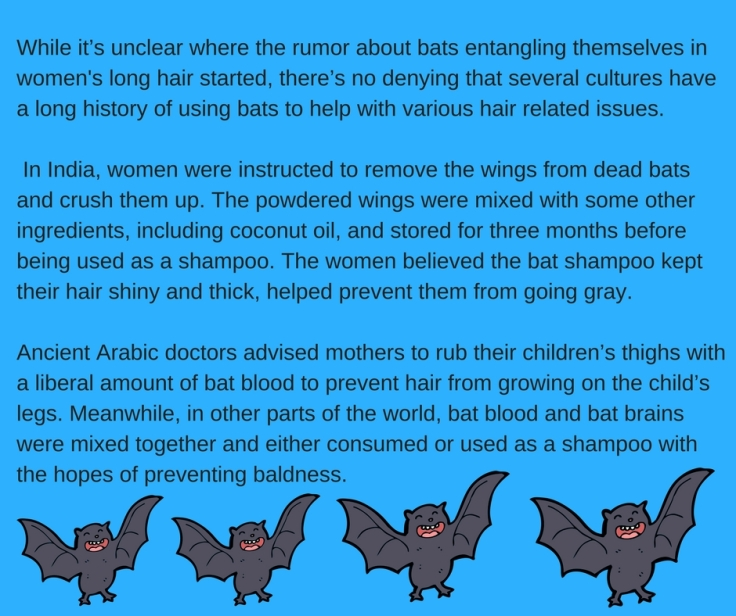 While it_s unclear where the rumor about bats entangling themselves in women's long hair started, there_s